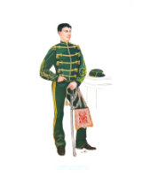 Plate ToL No.015 Ussari Di Piacenza Hussars Lieutanant walking out dress 1864