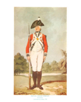 Plate ToL No.022 Private Centre Company Drill Order Coldstream Guards 1792