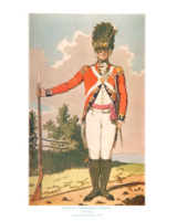 Plate ToL No.024 Sergeant Grenadier Company Drill Order Coldstream Guards 1792