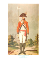 Plate ToL No.027 Sergeant Centre Company Drill Order Coldstream Guards 1792
