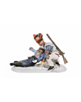 AC11J Line Infantry Private and Hussar Officer Painted