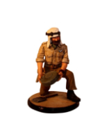 Sqn80 122  Officer S.A.S. N. Africa 1942 Painted
