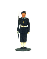 DS 19S T.S. Private in Beret Guard Dress Painted