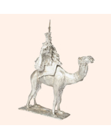 J 09 Dromadaire 30mm Willie Mounted Camel Kit