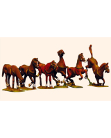 Willie Box 005 - 5D Continental Horses Kit