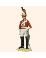 T54 583 Officer in full dress 6th Inniskilling Dragoons 1815 Painted